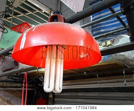Lamp with red lampshade and huge energy saving lamp