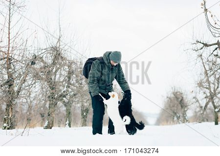 man playing with dogs in winter black and white dog man's best friend