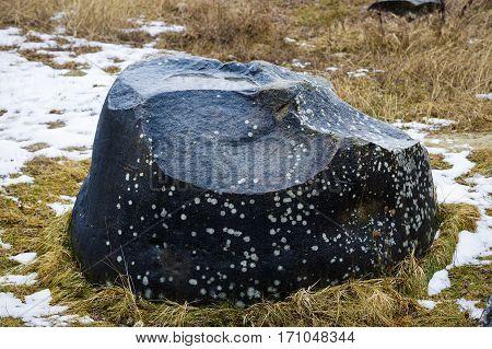 Rare Rock Formations Of (trovantii) Of Costesti, Valcea, Romania
