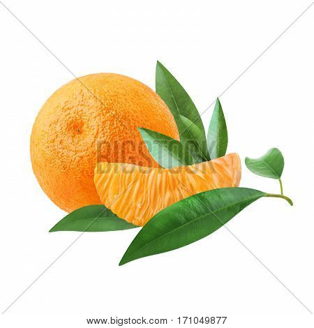 A ripe tangerine and a slice of citrus with green leaves isolated on white background. Beautiful citrus, southern fruit to set the mood