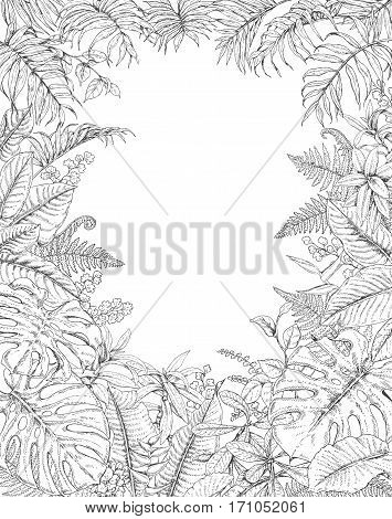 Hand drawn branches and leaves of tropical plants. Monochrome rectangle vertical l floral frame. Monstera fern palm fronds sketch. Black and white illustration coloring page for adult.