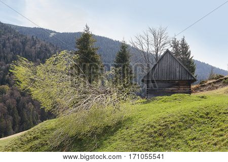 Old wooden hut on a background of mountains. Carpathians