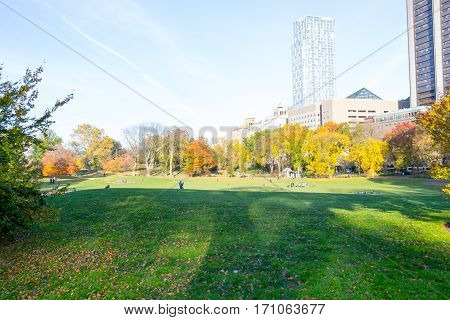 Lawn In Central Park By The Upper East Side In 100Th Street