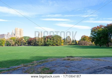 Empty Sheep Meadow During A Morning In The Fall