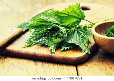 Medicinal plant-fresh stinging nettle on a cutting board