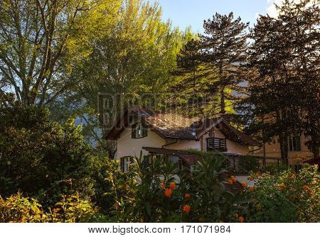 A house in Merano, Italy during sunny spring day standing between green trees with poplar fluff all around and flowers in front