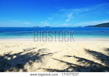 Shadow Of Coconut Palm Trees At The Beach In Kota Kinabalu, Sabah Borneo, Malaysia.