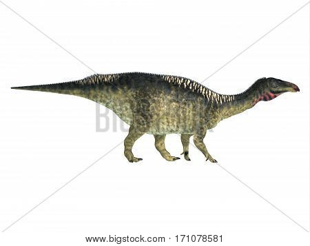 Lurdusaurus Side Profile 3d illustration - Lurdusaurus was a herbivorous ornithopod iguanodont dinosaur that lived in Niger in the Cretaceous Period.