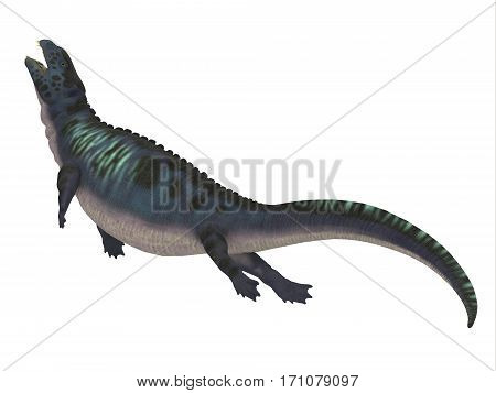 Placodus Dinosaur Side Profile 3d illustration - Placodus was a marine reptile that swam in the shallow seas of the Triassic Period in Europe and China.