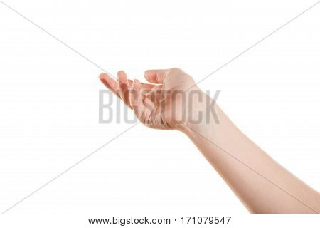 The open a hand the girl isolated on a white background