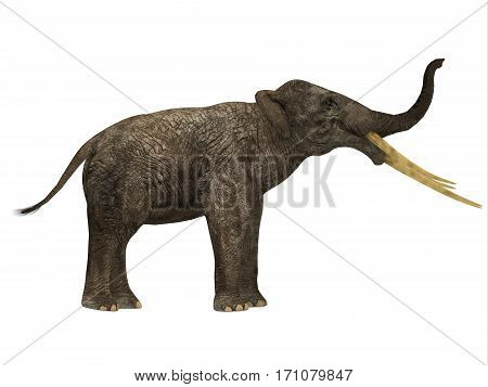 Stegotetrabelodon Side Profile 3d illustration - Stegotetrabelodon was an elephant that lived in the Miocene and Pliocene Periods of Africa and Eurasia. poster