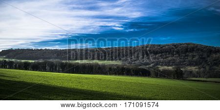View on the meadow and forest near Bath in England.Somerset.Cloudy sky.