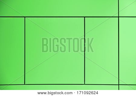Greenery. Green background crossed by lines forming squares and rectangles in an abstract architectural wall. Empty copy space for Editor's text.