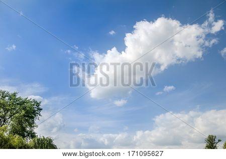 blue sky and light clouds close up