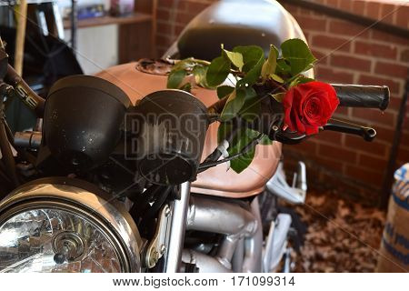 Red rose on motorcycle as a romantic message