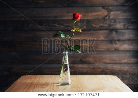 Red rose in vase on wooden table.