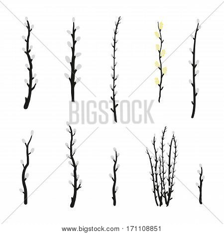 Collection of hand drawn pussy willow branches isolated on white background.