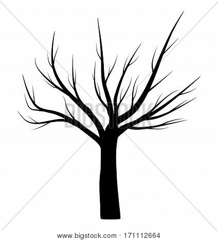 bare tree winter vector symbol icon design. Beautiful illustration isolated on white background