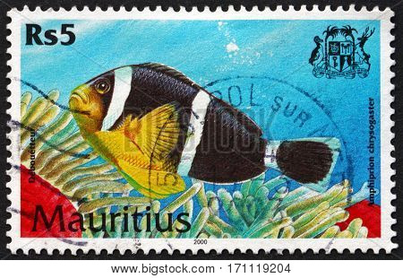 MAURITIUS - CIRCA 2000: a stamp printed in Mauritius shows Mauritian anemonefish amphiprion chrysogaster is a species of marine tropical fish circa 2000