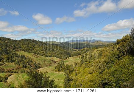New Zealand green hills and landscape with valleys and meadows