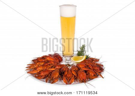 Red steamed crawfish on the white wooden background. Rustic style. Cover for the magazine. Seafood menu.