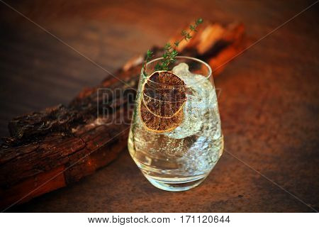 Gin Tonic with Dry Lemon Slices and Rosemary