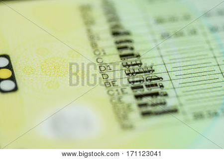 Driving licence categories A or B or C or C+E or D in focus