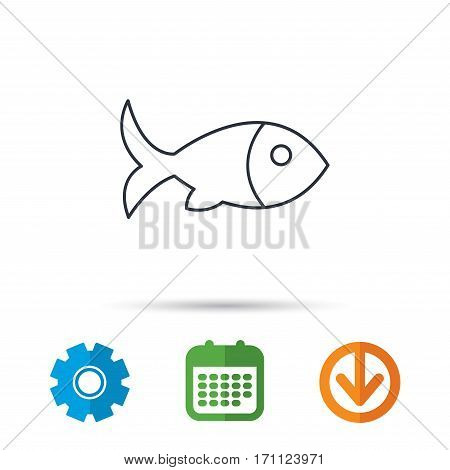Fish with fin icon. Seafood sign. Vegetarian food symbol. Calendar, cogwheel and download arrow signs. Colored flat web icons. Vector