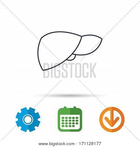 Liver icon. Transplantation organ sign. Medical hepathology symbol. Calendar, cogwheel and download arrow signs. Colored flat web icons. Vector