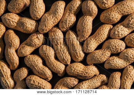 Peanuts seed. Many groundnuts. Background of raw peanuts in shell.