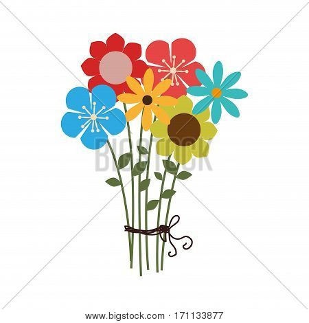 colorful bouquet of several types of flowers vector illustration