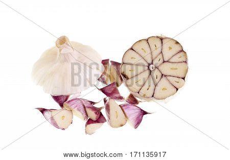 Cloves of garlic Allium sativum cut on the cross section