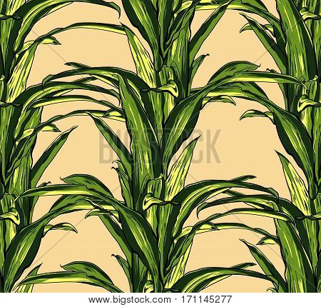 Tropical leaves seamless on a beige background vector. EPS