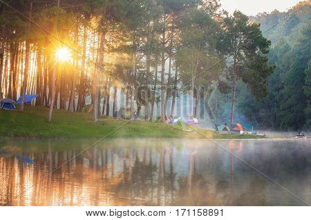 Pang ung park and Morning in forest with camping in the mist Pangung Mae Hong Son near Chiang Mai Thailand