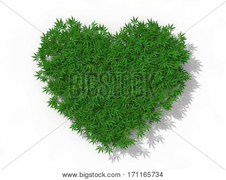 heart symbol with marijuana weeds. conceptual 3d illustration. isolated on white.