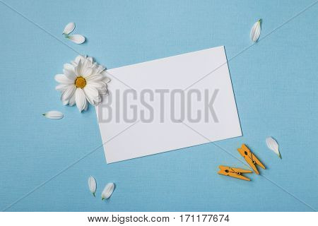 Spring top view composition: blank stationary template / invitation mockup white flower with yellow heart scattered petals around clothespins. Sky blue background with copy space for text. Flat lay.