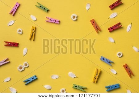 Spring or summer background with frame space for text: chamomiles petals many bright multicolored clothespins. Top view. Flat lay.