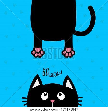 Black cat looking up. Funny face head silhouette. Meow text. Hanging fat body paw print tail. Cute cartoon character. Kawaii animal. Baby card. Pet collection. Flat. Blue background. Isolated. Vector