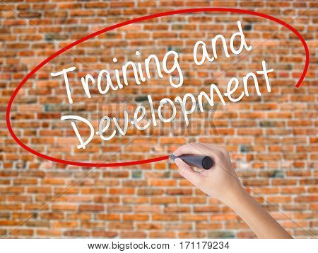 Woman Hand Writing Training And Development With Black Marker On Visual Screen