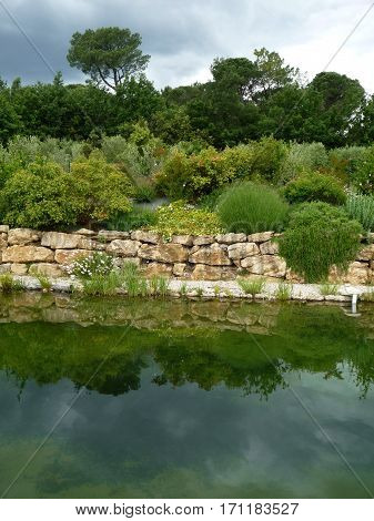 Shrubbery and dry stone wall reflected in a pond in the South of France
