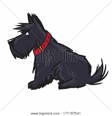 scottish terrier. pet. dog cartoon character dog sitting