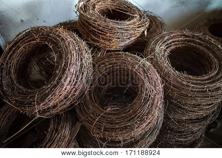 The rusty rings of an old barbed wire lying in military warehouses waiting for