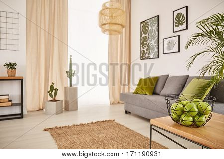 Bright Room With Earthy Design