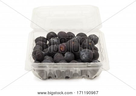 Blueberry In Plastic Package