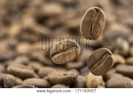 Flying Fresh Coffee Beans As A Background With Copy Space. Coffee Beans Falling Down With White Stea