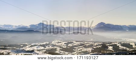 Beautiful Winter Panorama With Fresh Snow. Landscape With Spruce Pine Trees, Blue Sky With Sun Light