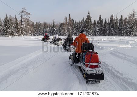 Athletes stopped at a clearing while traveling in the winter woods on snowmobiles.