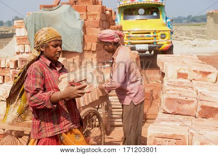 DHAKA, BANGLADESH - FEBRUARY 19, 2014: Unidentified workers move bricks at a brick factory in Dhaka, Bangladesh. In Bangladesh women often attend very hard jobs.