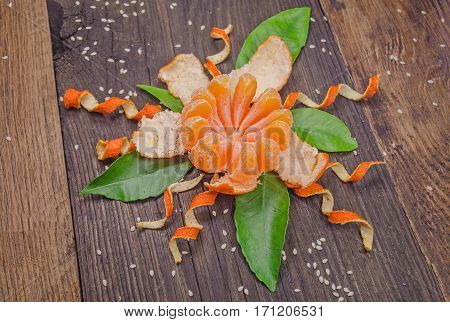 Orange radial peeled like a  flower on wooden  background. Tangerine fruit partly peeled cleaned