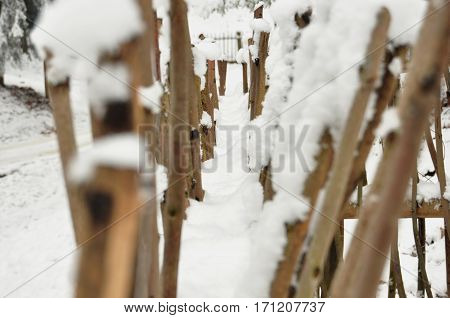 Snowbound twig fence in the forest close up. Inside view.